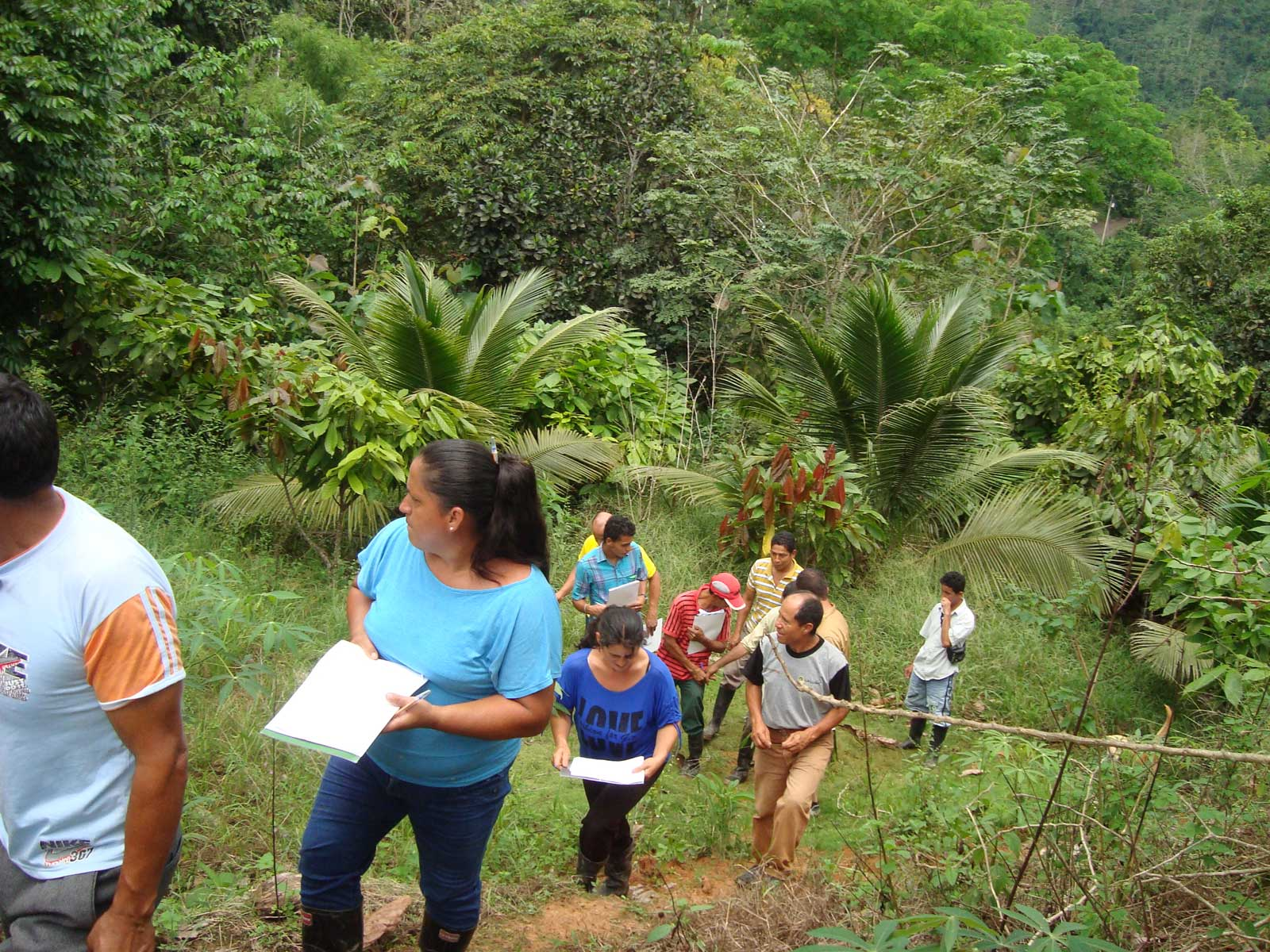 Adult visitors hike through the forest