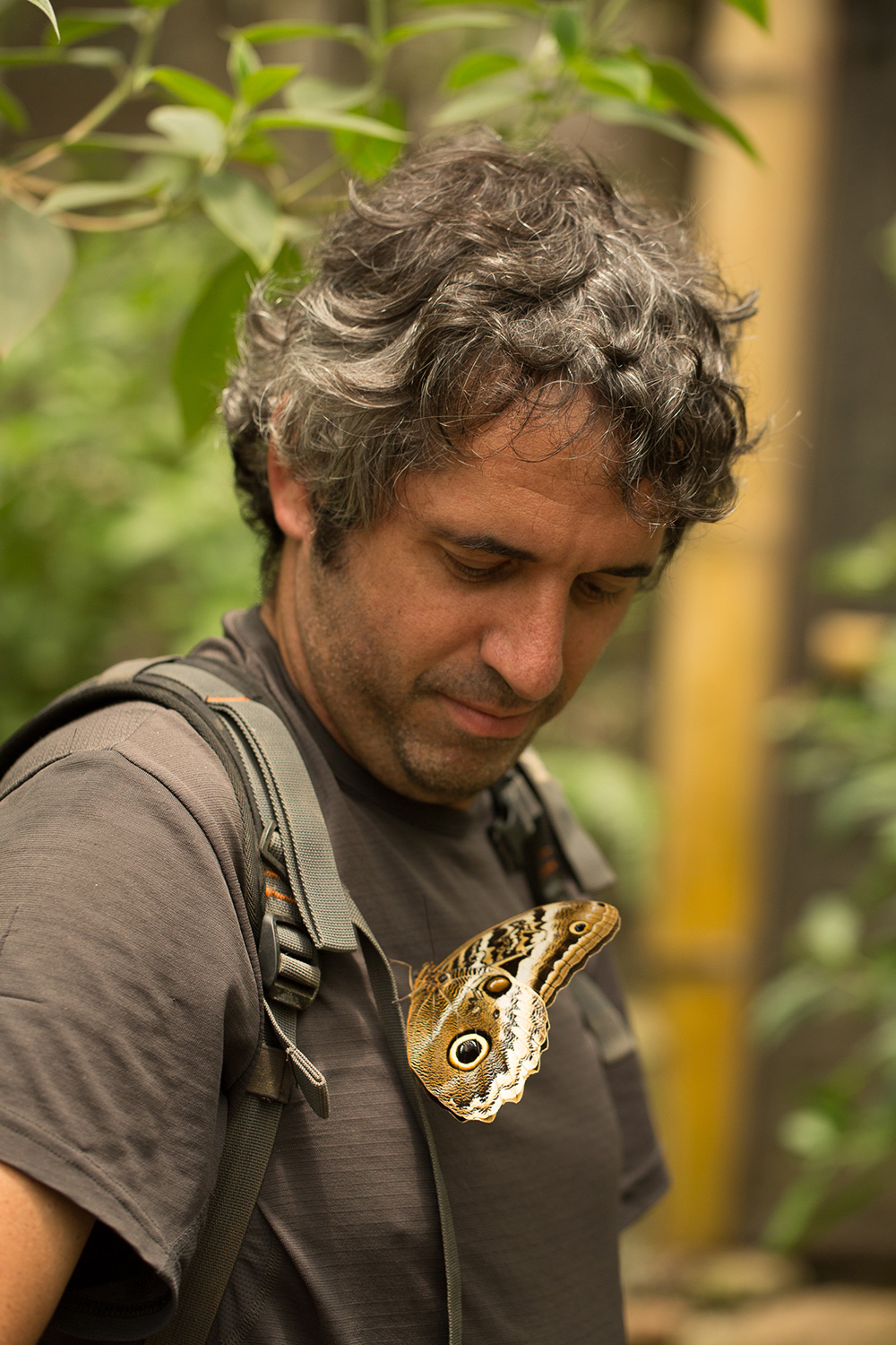 A team member looks at a butterfly that has perched on his chest