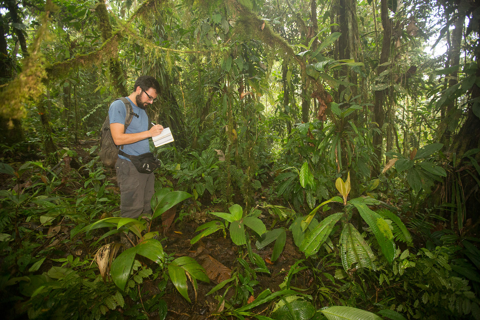 FCAT member Luke Browne taking notes on his findings in the forest