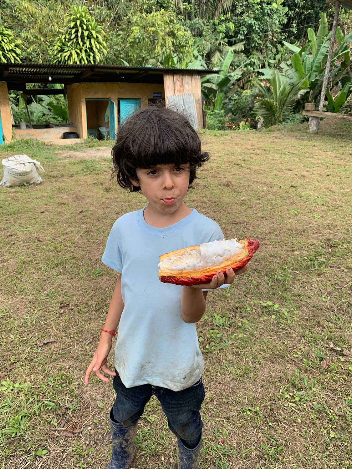 A young boy eats from a large exotic fruit