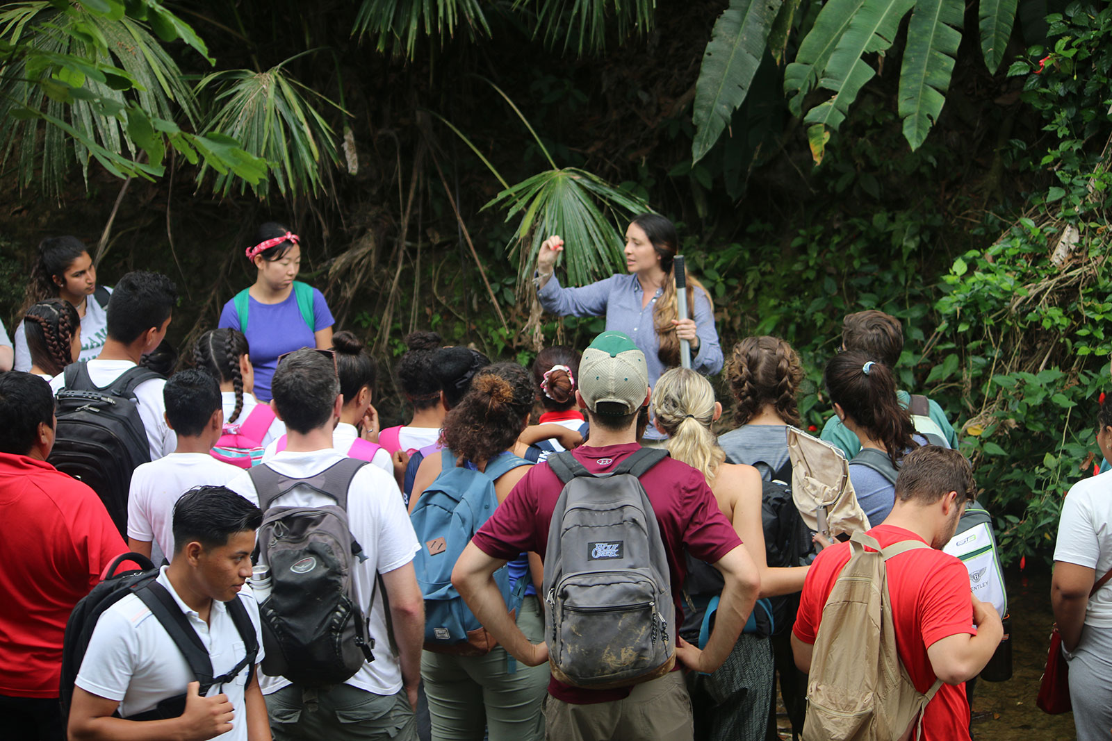 A team member teaching students underneath tall trees