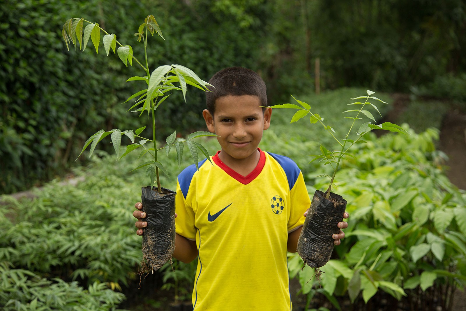 A young student with a seedling in each hand